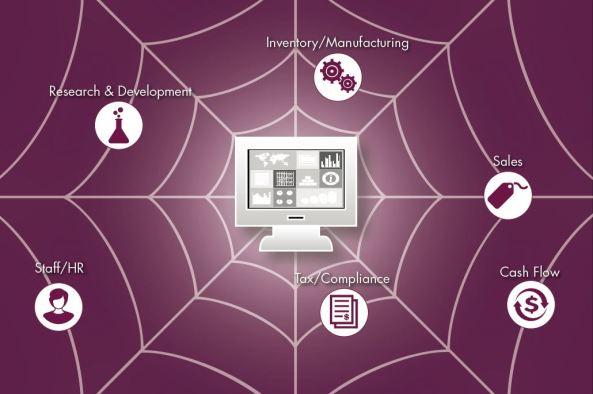 ERP_Spider Web